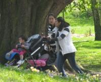 spring strollers