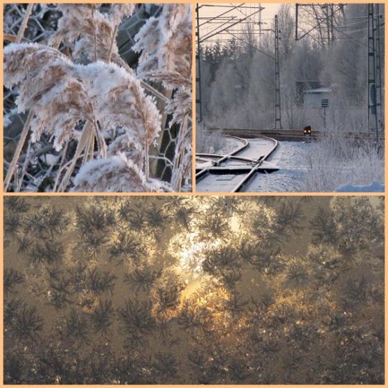 frosty morning 3