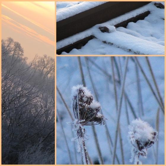 frosty mornings 1