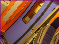 purple train door
