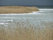frozen shore side