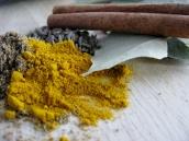 Landskrona - best curry ever - February