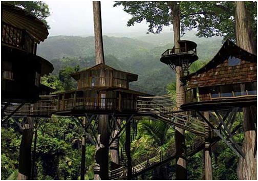 Tree House Hotel Costa Rica Ajilbab Com Myguiltypleasures