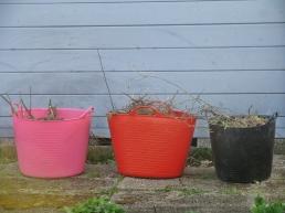 gardeners row