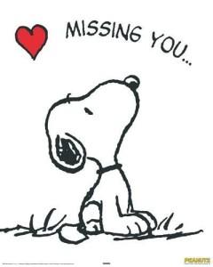 missing you - fotoalbum ee