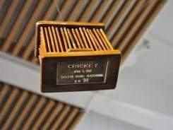 cricket box