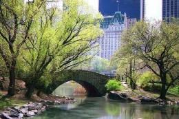 Central Park - .facebook com