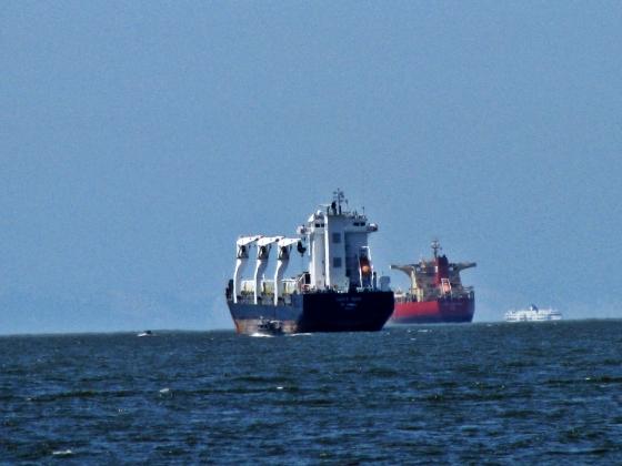 sailing against the horizon - English Bay, Vancuver