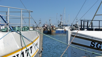 simrishamn fishing harbor