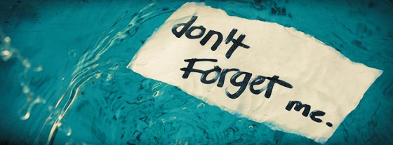 Dont-Forget-Me  - iwantcovers com
