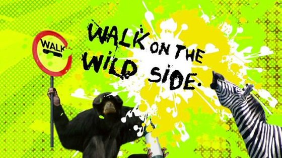 walk on the wild side, bbc.co uk