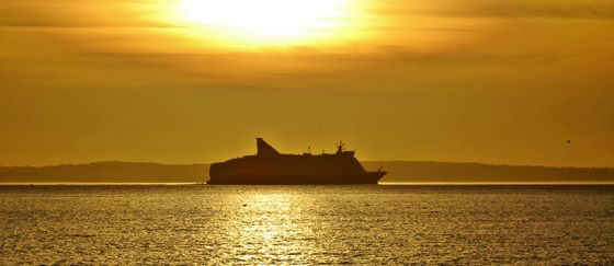 golden cruising
