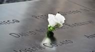 in memory of David