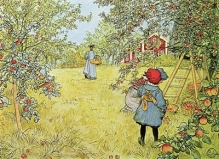 the-apple-harvest-carl-larsson - fineartamerica com -