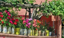 flower posts