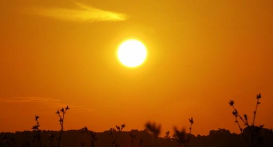 sile sunset