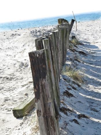 skanör beach