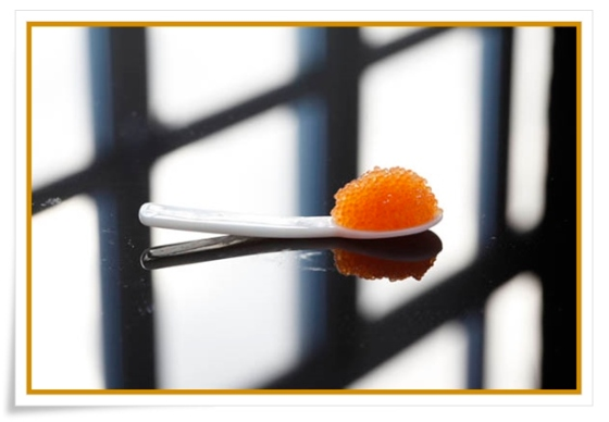 Caviar_of_Kalix - dalmato99