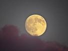 skanör moon featured