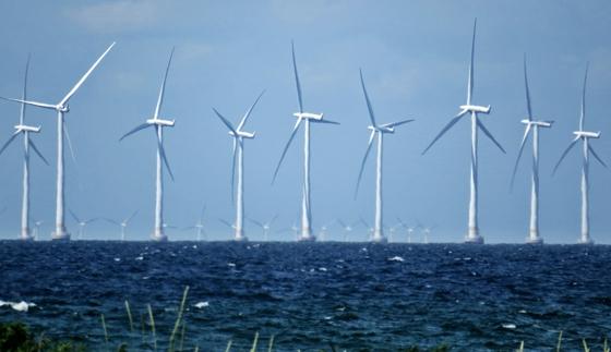 The Lillgrund wind farm