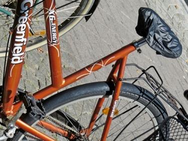 bronze bike