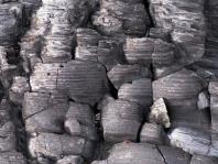 burnned wood