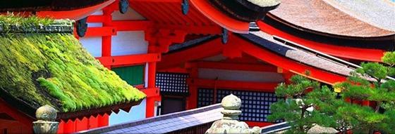 japan roofs - iwaso com