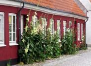 Köge street house