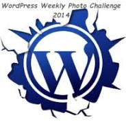 weekly photo challenge logo