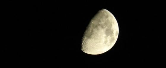 chicago moon