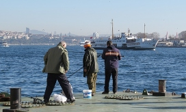 ferries and fishing