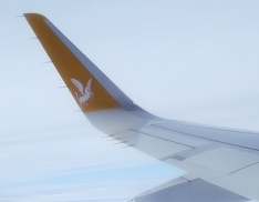 pegasus wing - featured