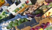 corner veg & fruit