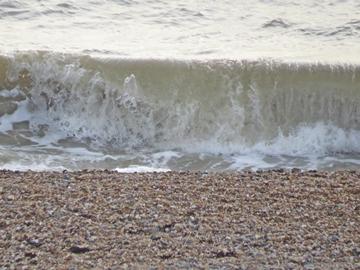 sea meets brigton beach