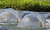 Fountain of Prayer 2