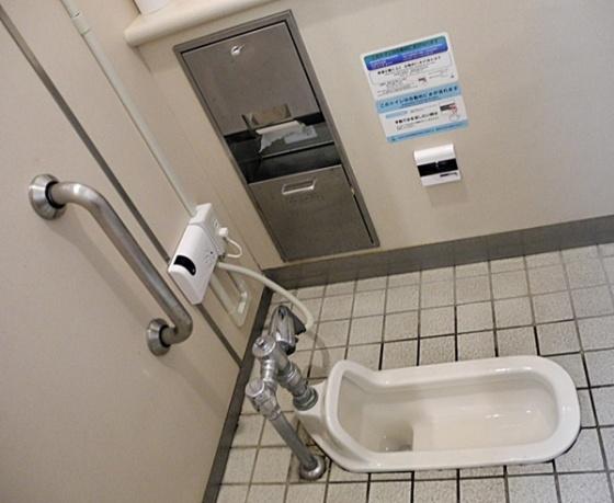 Japanese-Style-Toilet- mylostintranslation com