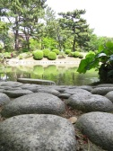 stones and pond