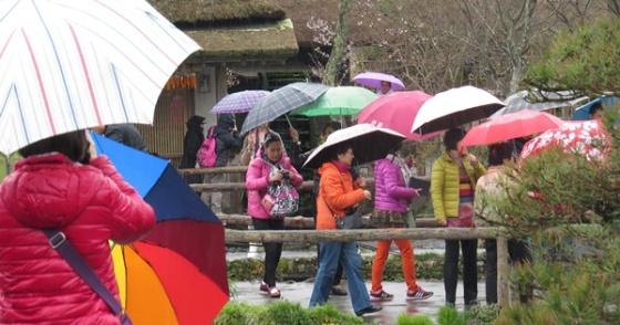 umbrella magic