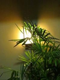 welcominng light