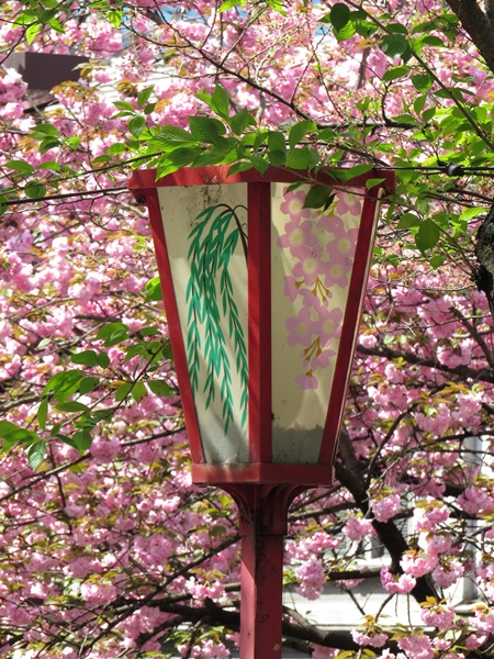 gion lamppost