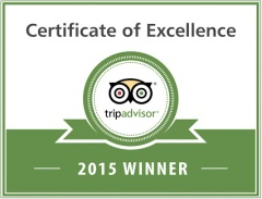 tripadvisor award - google plus