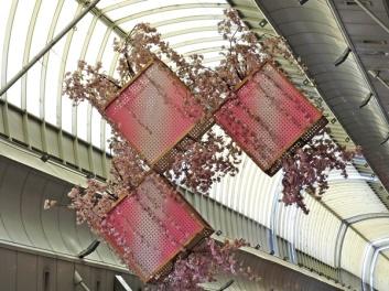 arcades ceiling