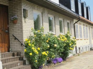 street house