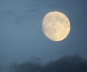 skagen moon