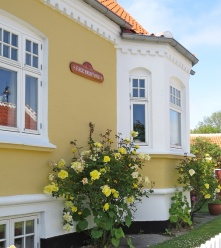 yellow house and roses