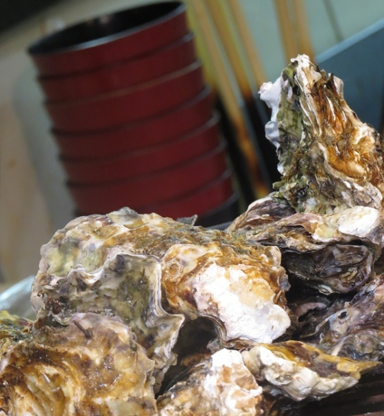 BBQ oysters