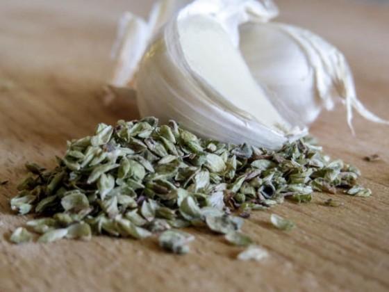 oregano & garlic