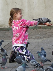 girl and the pigeons