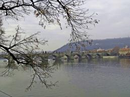 moldau & charles bridge