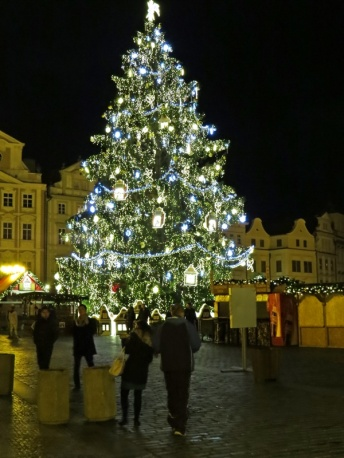 old town tree